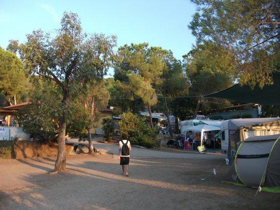Stella Mare Camping Village: il camping