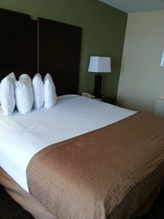 Four Points by Sheraton Virginia Beach Oceanfront: king room