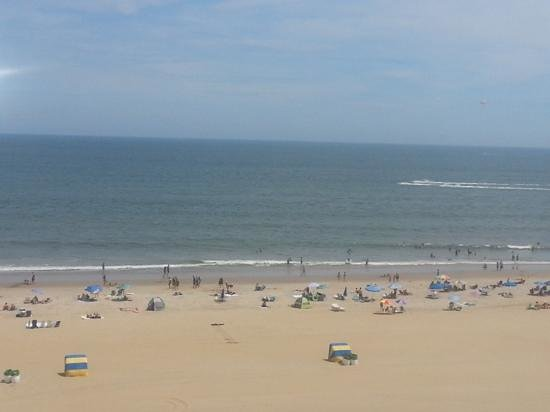 Four Points by Sheraton Virginia Beach Oceanfront: VA beach on a sunny day
