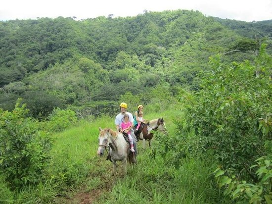 Ocean Ranch Park : Ridding Horses in the mountains