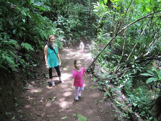 Ocean Ranch Park : Walking to the Waterfall