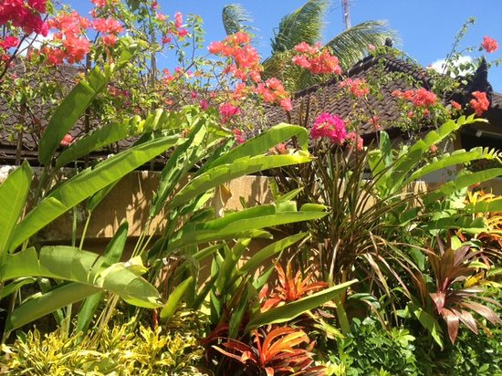 Dyana Villas: beautiful gardens in every villa