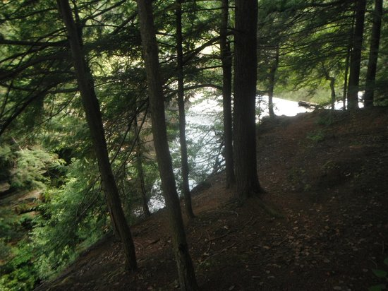 Chateaugay, État de New York : forest at high falls park