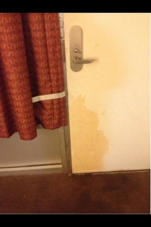 Travelodge Fredericksburg : Stains all over