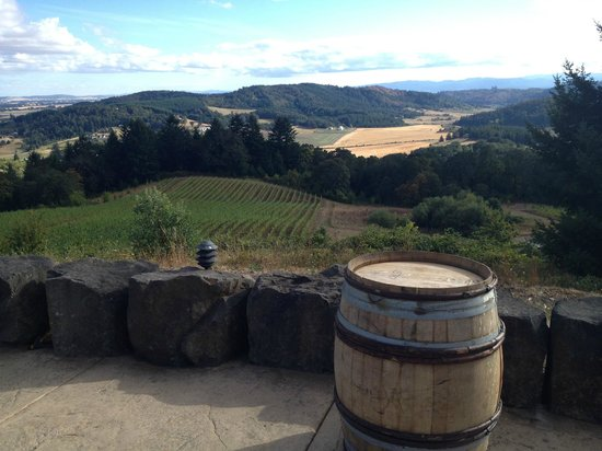 Youngberg Hill Vineyards & Inn: Valley View