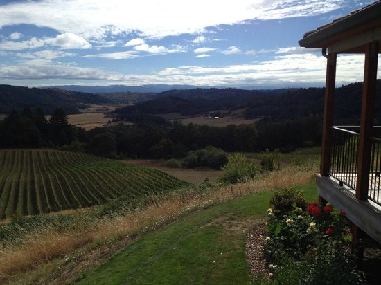 Youngberg Hill Vineyards & Inn: Afternoon wine tasting