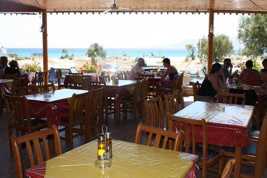 Anesis Spiros : anesis - view to agios prokopios beach