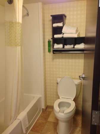 Hampton Inn and Suites Detroit/Airport-Romulus: Shower/Tub/Toilet