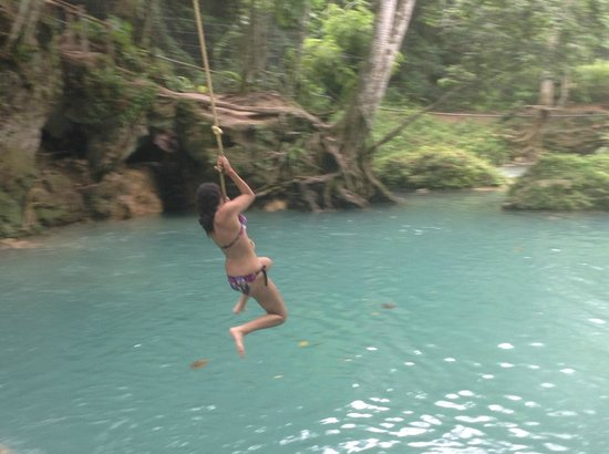 Blue Hole Mineral Spring: Rope swings