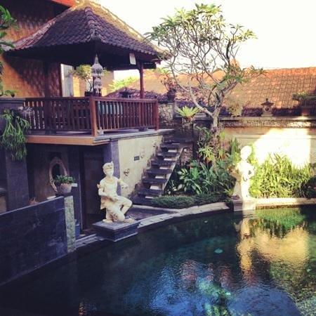Kunang-Kunang Guesthouse: pool view
