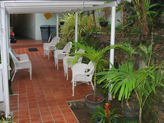 The Green Iguana Hotel: Lovely garden and grounds