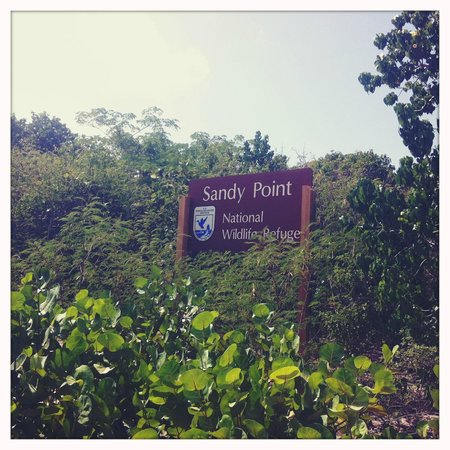 Virgin Islands Bike and Trails : Sandy Point