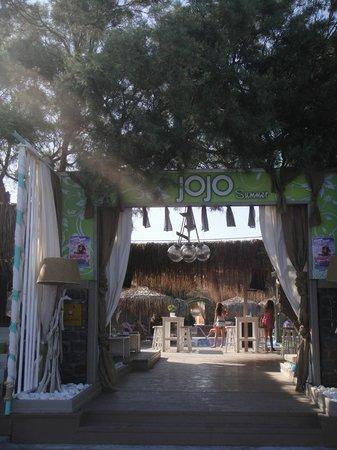 Jo Jo's Beach Bar : Jojo's