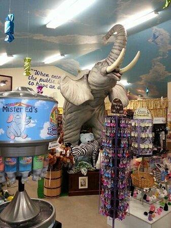 Mister Ed's Elephant Museum : main floor
