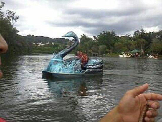 Atibaia, SP: lago do parque..