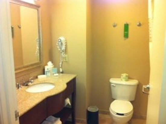 Hampton Inn & Suites Tacoma-Mall : Bathroom