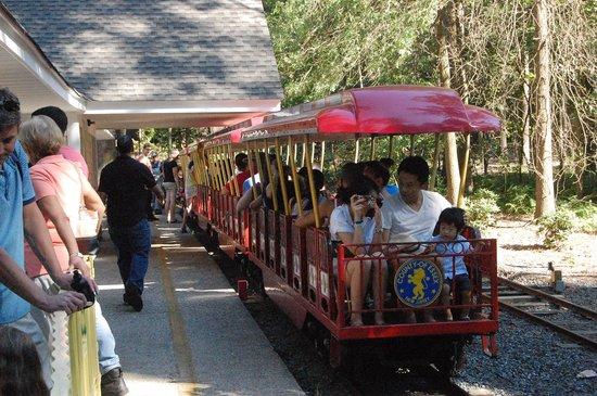 Turtle Back Zoo: train ride