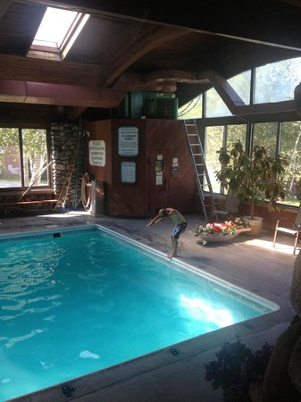 Mollyockett Motel : Indoor Pool !