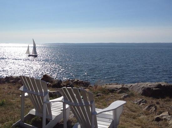 The Keeper's House: cozy adirondack chairs placed around the property for you to enjoy the view. we saw harbor seals