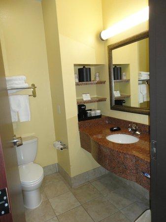 Best Western Plus Manvel Inn & Suites: Bathroom