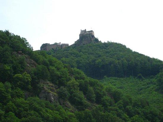 Wein & Wachau: View along the Danube