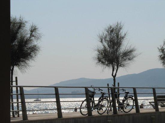 Palma on Bike: Un sogno...