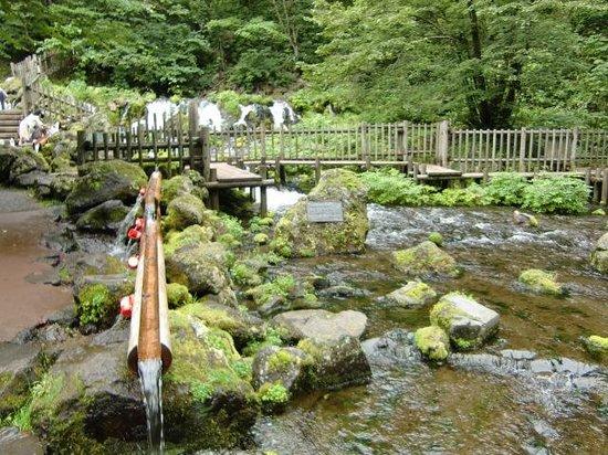 Kyogoku-cho, Japan: 休日には名水を汲む人でいっぱいになる