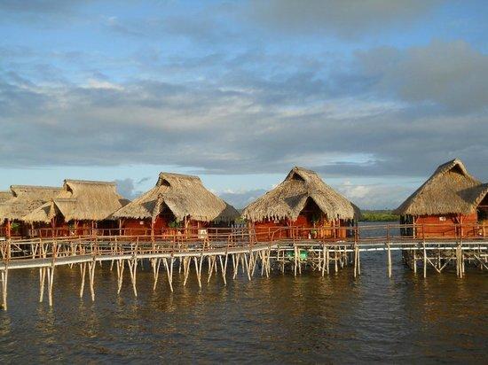 Flamingo Bay Water Lodge: Chalets