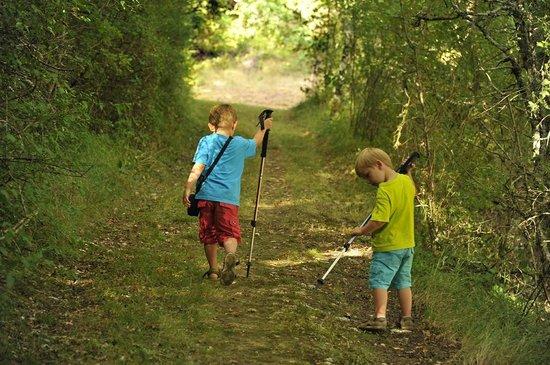 La Closerie de la Beyne: Chemin de randonnée en bordure de propriété