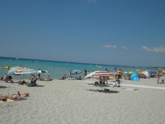 Hotel Xaloc Playa: der strand
