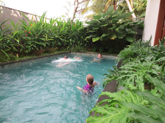 Duana's Homestay: The private villa's pool