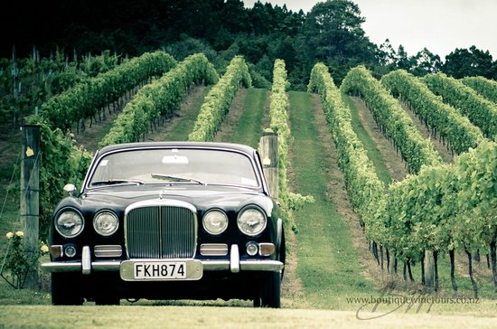 Boutique Wine Tours -  Tours: Relax on a private wine tour tailored just for you