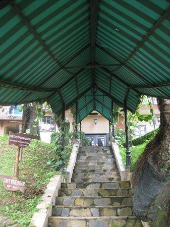 Thanh Thuy Hotel Dalat: ingresso pedonale