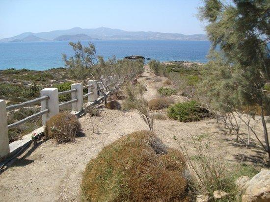 Hotel Pirgos Stelida: Το μονοπάτι για την παραλία