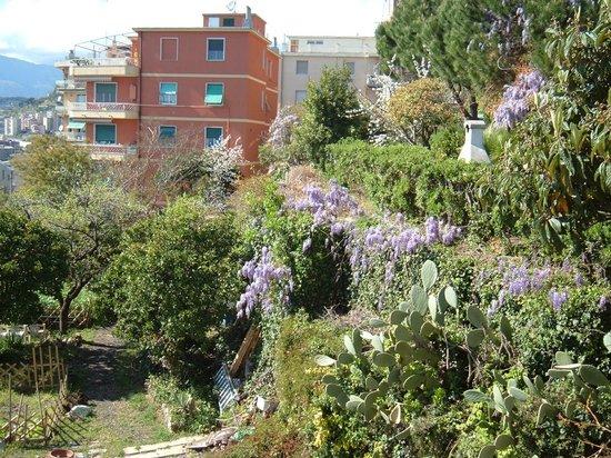 B&B L'oasi: area giardino