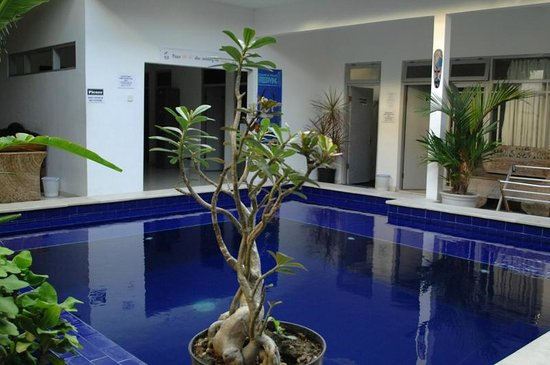 Big Pineapple Backpackers: Fab swimming pool to cool off