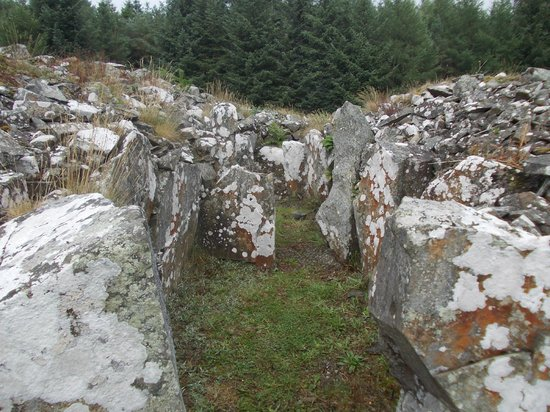 Crossmaglen, UK: Annaghmare Court Tomb