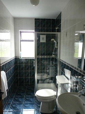 Haggart Lodge B&B: Haggart Lodge, shower room