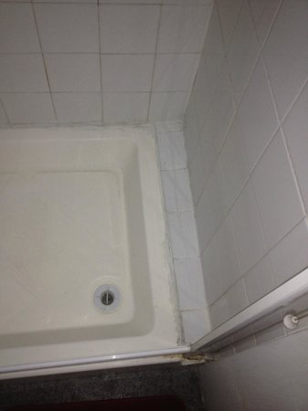 Hemel Guesthouse: Dirty shower