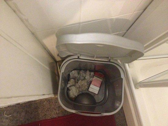 Hemel Guesthouse: Full bin