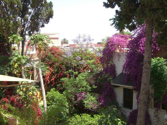 Riad Malika: riad en fleur 4
