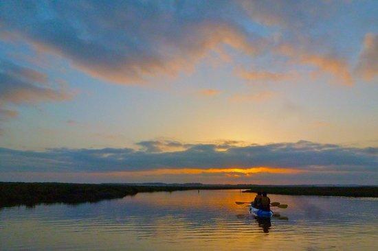 South Kayak: Sunset