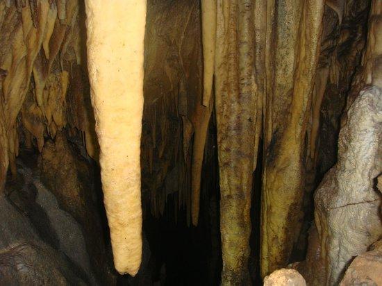 Furen Limestone Cavern: 鍾乳石