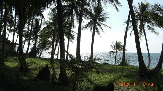 Mimosa Resort & Spa: View from the Hotel grounds.