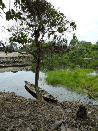 Reserva Natural Marasha: nature