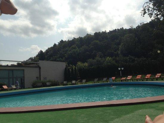 Danubius Health Spa Resort Thermia Palace: pool