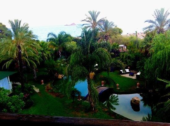 Hotel Mediterraneo : giardino ben curato con accesso diretto alla spiaggia