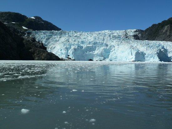 Adventure Alaska Tours: upclose and personal in Kenai Fjords National Park