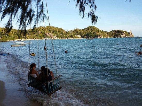 Assava Dive Resort : La plage au soleil couchant (et à marée haute)