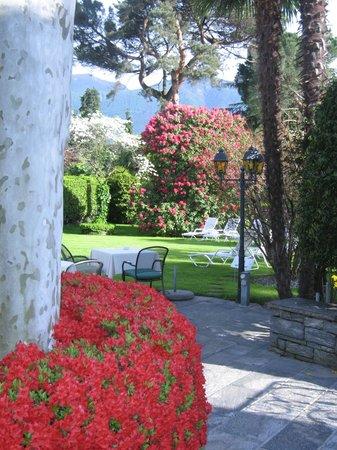 Hotel Ascovilla : Garten Essen 6